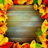 Kolor żółty jesieni mokrzy liście na tle EPS10 ilustracja wektor