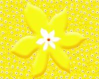 Kolor żółty kwiaty Tło wally Obrazy Royalty Free