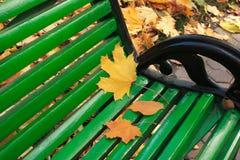 Kolor żółty liście na zielonej ławce Zdjęcie Royalty Free
