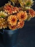 Kolor żółty ogrodowy Dalia i pomarańcze kwitniemy w metalu wiadrze na ciemnym tle zdjęcia stock