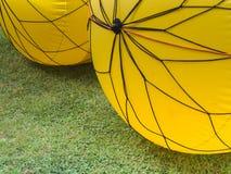 Kolor żółty pociesza ścigać się Obrazy Stock