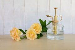 Kolor żółty róża i butelka wodna kiść Fotografia Stock