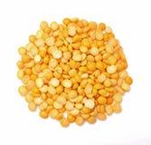 Kolor żółty rozszczepiony groch Zdjęcie Royalty Free