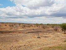 Kolor żółty ziemia w Afryka Fotografia Stock
