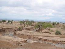 Kolor żółty ziemia w Afryka Obraz Stock