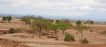 Kolor żółty ziemia w Afryka Zdjęcia Stock
