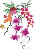kolor dekoracji orchidea Zdjęcie Stock