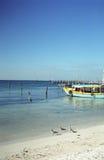 kolor isla mujeres łodzi Zdjęcie Royalty Free