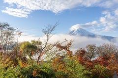 Kolor jesień liście i Mt Fuji z mglistym w ranku przy Obraz Stock