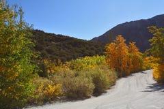 kolor jesienna droga gruntowa Obrazy Royalty Free