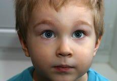 kolor jest portret Michaela Obrazy Stock