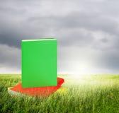 Kolor książki w traw polach i rainclouds Obraz Stock