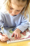 kolor księgowa Fotografia Stock