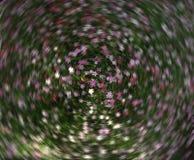 kolor kwiatów Obrazy Royalty Free
