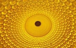 Kolor lampy - Lotus światła Obraz Royalty Free