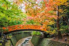 kolor li?cie jesieni? zdjęcie stock