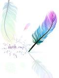 kolor pióra ilustracji