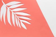 Kolor roku 2019 Żywy koral NIESKORY Livingcoral Tropikalny liścia tło zdjęcia royalty free