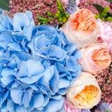 kolor tła kwiaty Zdjęcia Stock