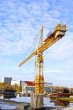 Kolor żółty żuraw Fotografia Stock