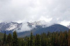 Kolorado-Berge Stockfotos