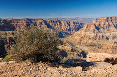 Kolorado-Fluss im Grand Canyon Lizenzfreies Stockbild