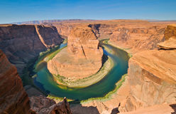 Kolorado-Flusspferden-Schuhschlaufe Stockfotos