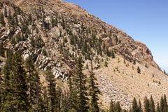 Kolorado Góry 26 Obrazy Stock