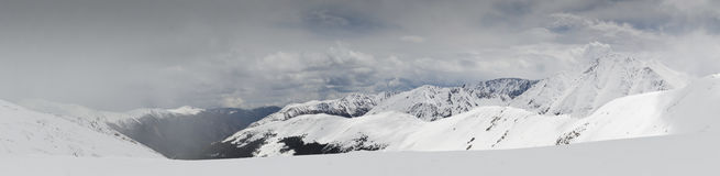 Kolorado góry zakrywać z śniegiem obraz royalty free