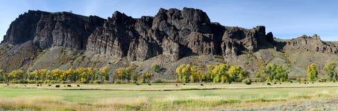 Kolorado-Panorama stockfotos