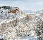 Kolorado pogórza w świeżym śniegu obrazy royalty free