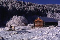 Kolorado rancho w zimie Fotografia Royalty Free