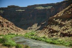 Kolorado Rzeczni flisacy Przyćmiewający Nadzwyczajnymi jarami w Moab obraz royalty free