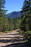 Kolorado-Schotterweg Stockfotografie