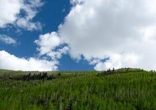 Kolorado Skalistej góry Sceniczny widok Zdjęcie Royalty Free