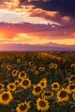 Kolorado wieczór niebo zdjęcia royalty free