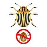 Koloradokäfer und Verbotszeichen Lizenzfreie Stockfotos