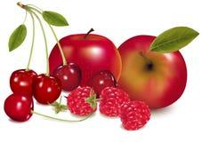 kolorowa świeżej owoc grupa Obrazy Stock