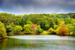Kolorowa Australijska jesień w górze Wyniosłej Fotografia Royalty Free