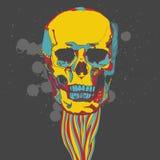 Kolorowa czaszka z ornamentem Zdjęcie Stock