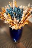 Kolorowa dekoracyjna waza z wysuszoną banatką Obraz Stock