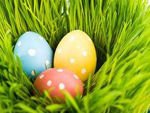 kolorowa Easter jajek trawa Obraz Royalty Free