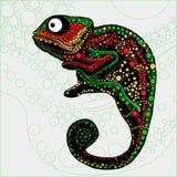 Kolorowa ilustracja kameleon Zdjęcia Royalty Free