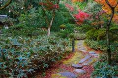 Kolorowa jesień W przy świątynią w Kyoto Fotografia Royalty Free