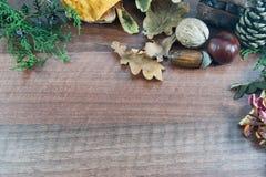 Kolorowa jesień z liśćmi, sosnowi rożki, kasztany, dokrętka Fotografia Stock