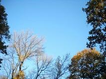 Kolorowa jesień 22 Obrazy Royalty Free