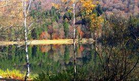 Kolorowa jesień w jeziorze Obraz Royalty Free