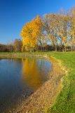 Kolorowa jesieni natura przy stawem cesky krumlov republiki czech miasta średniowieczny stary widok zdjęcie royalty free