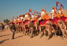 Kolorowa karawana wielbłądzi jeźdzowie od Rajasthan wojskowego deportament Fotografia Royalty Free