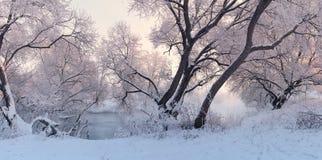 kolorowa krajobrazowa zima Panorama winer wschód słońca Zdjęcia Royalty Free